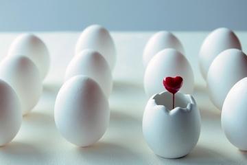 【夢占い】卵の夢の意味21選!可能性を表す?