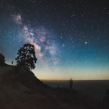 12 プラス 月 人 2019 土星