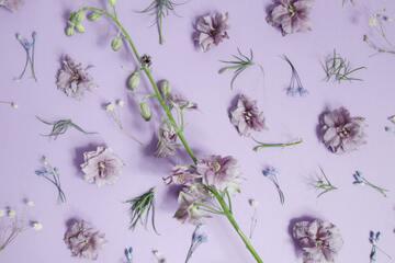 紫シャンプーおすすめランキング10選!効果や使い方を徹底解説!