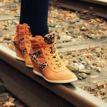 夢 探す 靴 を