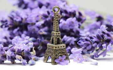 別れを意味する花言葉22選!失恋や儚く悲しい感情を表す花は?